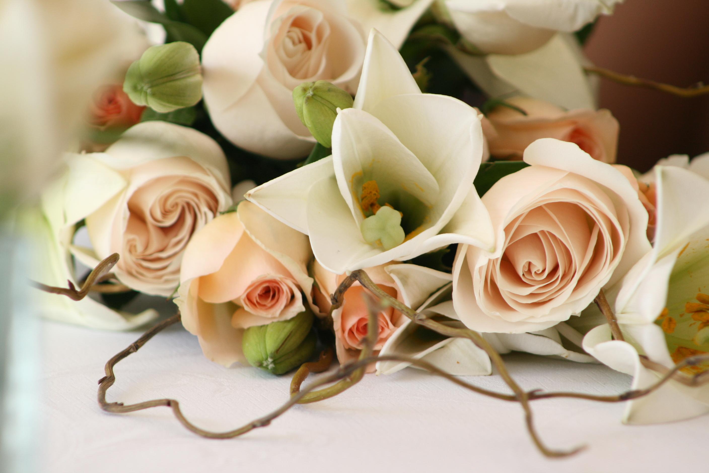 Verzorging van de lelie bloemen nederland - Como preparar mi boda ...